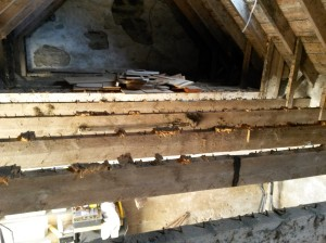The exposed joists left after removing the rotten boards